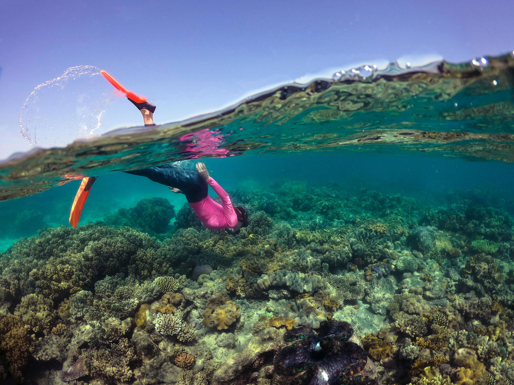 Explore everything in Cairns & Great Barrier Reef
